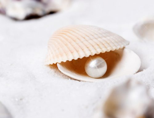 Pearl Powder: What Exactly Does it Do for Your Skin?